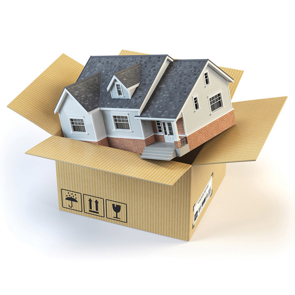illustration of a house put in a moving box